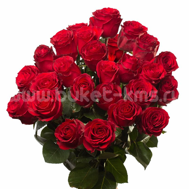 "Букет цветов из 25 роз ""Секси Ред"""